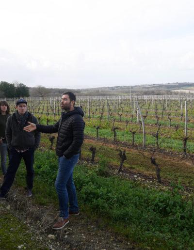 visite-viticole
